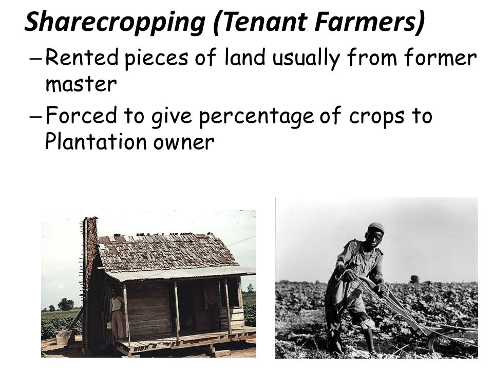 Sharecropping (Tenant Farmers)