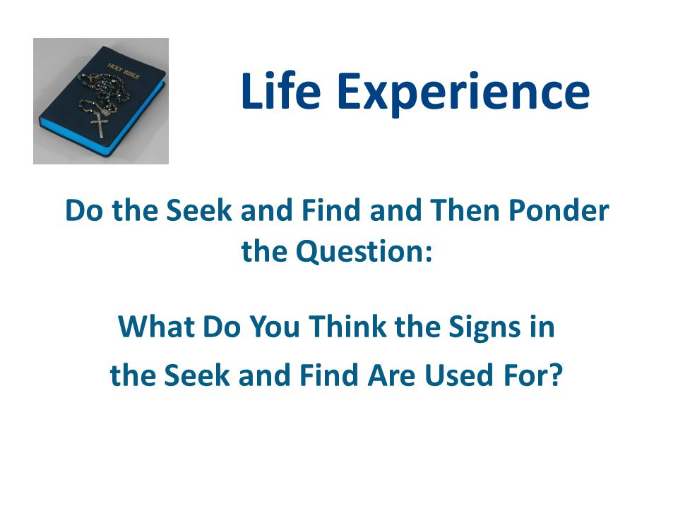Life Experience Do the Seek and Find and Then Ponder the Question: