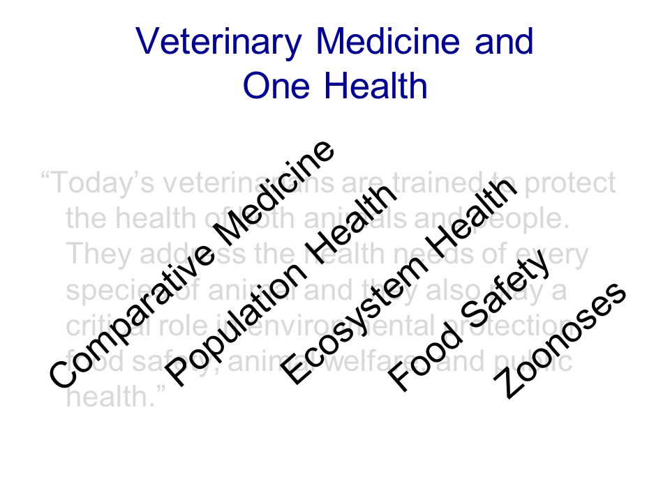 Veterinary Medicine and One Health