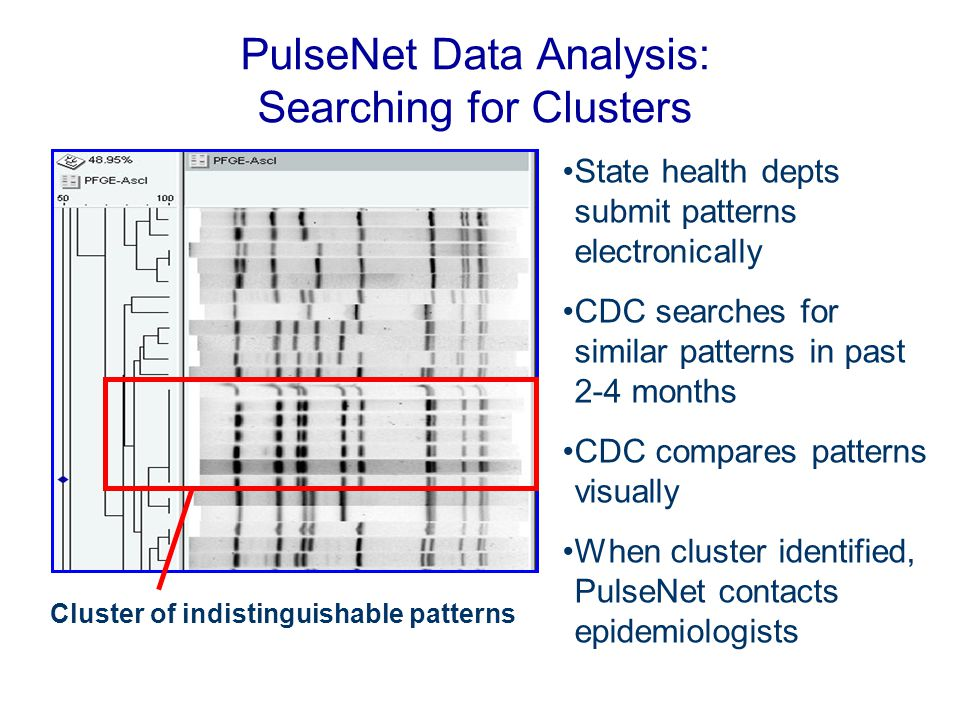 PulseNet Data Analysis: Searching for Clusters