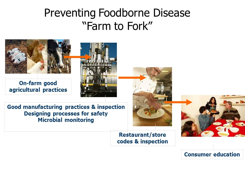Preventing Foodborne Disease Farm to Fork