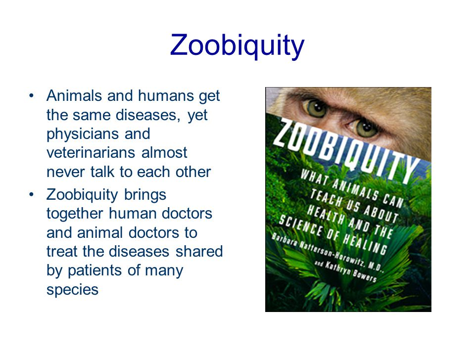 Zoobiquity Animals and humans get the same diseases, yet physicians and veterinarians almost never talk to each other.