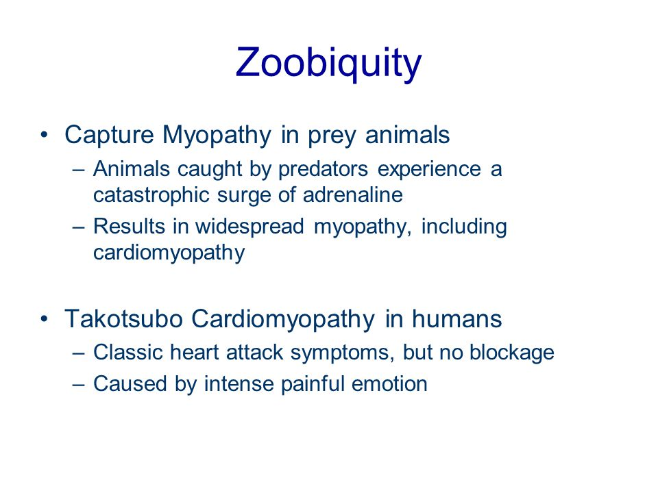 Zoobiquity Capture Myopathy in prey animals