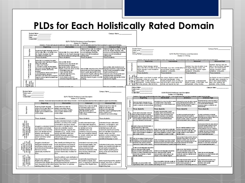 PLDs for Each Holistically Rated Domain