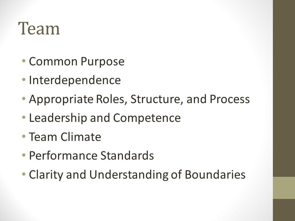 Team Common Purpose Interdependence