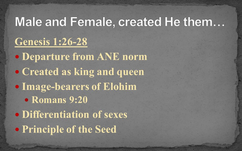 Male and Female, created He them…