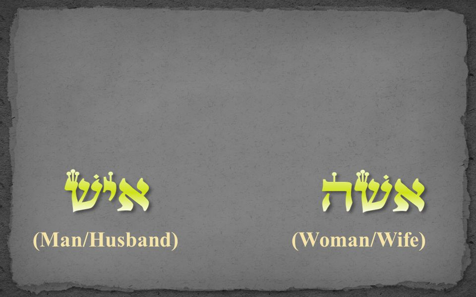 (Man/Husband) (Woman/Wife)