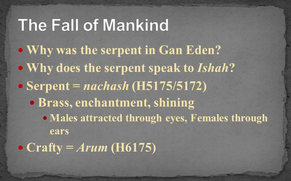 The Fall of Mankind Why was the serpent in Gan Eden