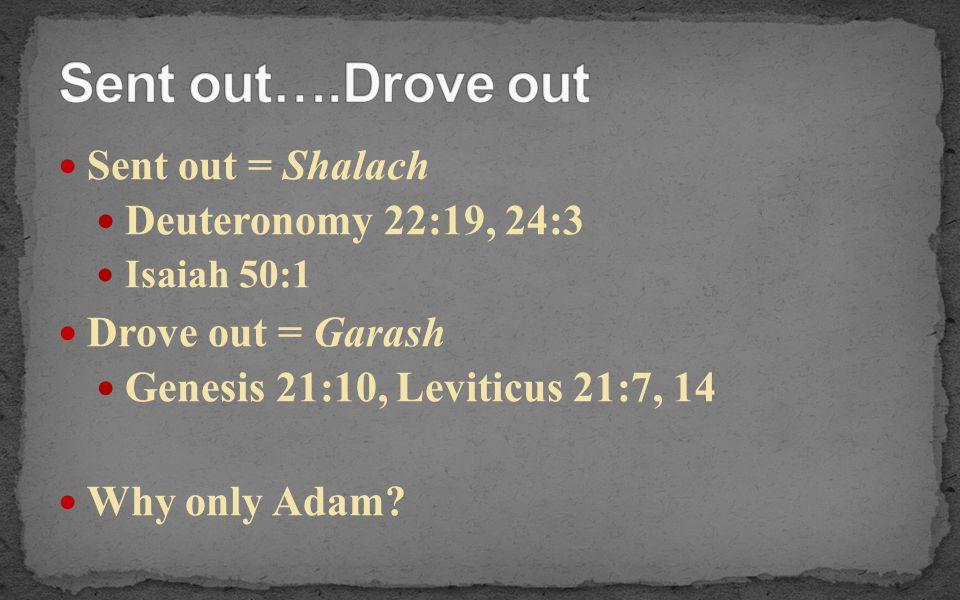 Sent out….Drove out Sent out = Shalach Deuteronomy 22:19, 24:3