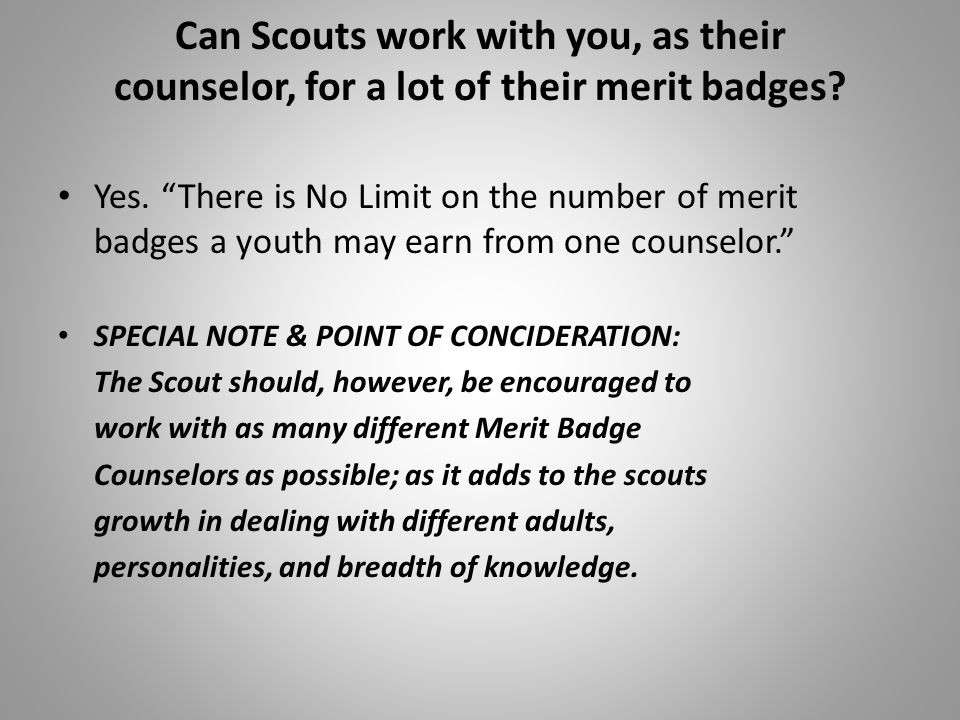 Can Scouts work with you, as their counselor, for a lot of their merit badges
