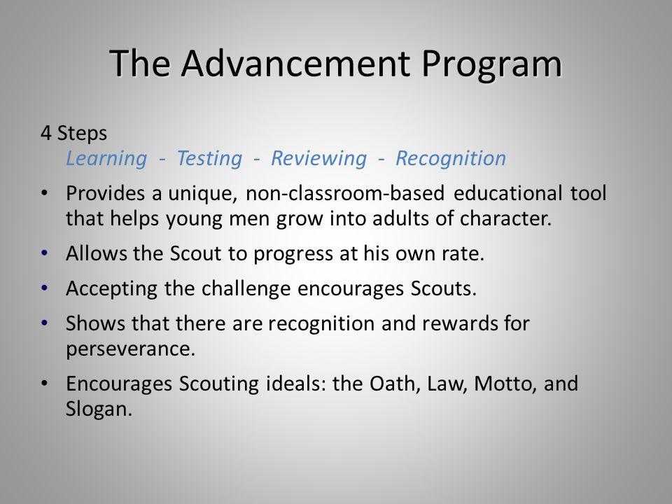 The Advancement Program