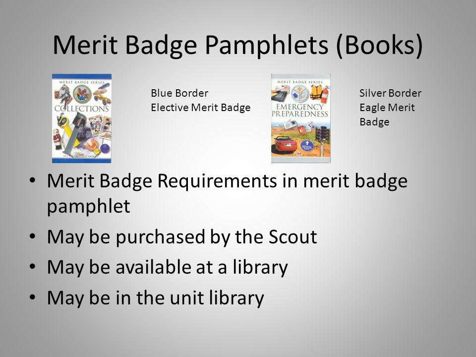 Merit Badge Pamphlets (Books)