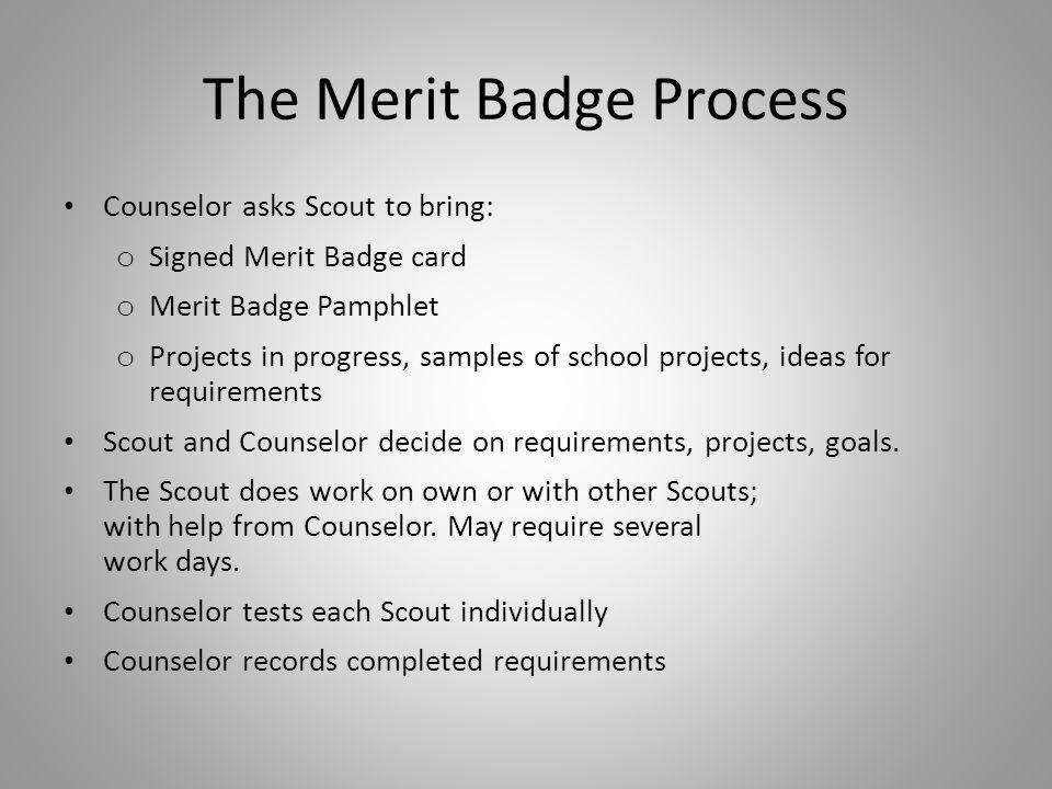 The Merit Badge Process