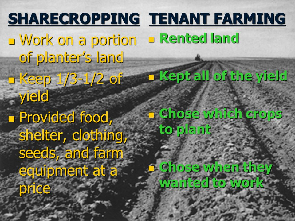 SHARECROPPING TENANT FARMING