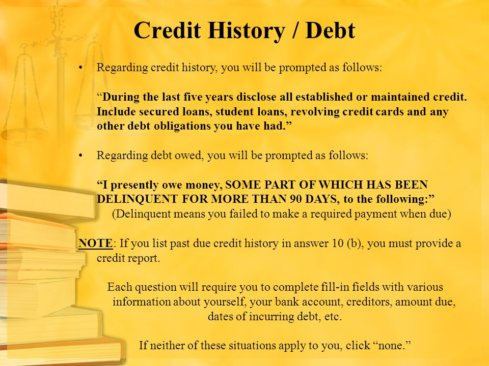 Credit History / Debt Regarding credit history, you will be prompted as follows: