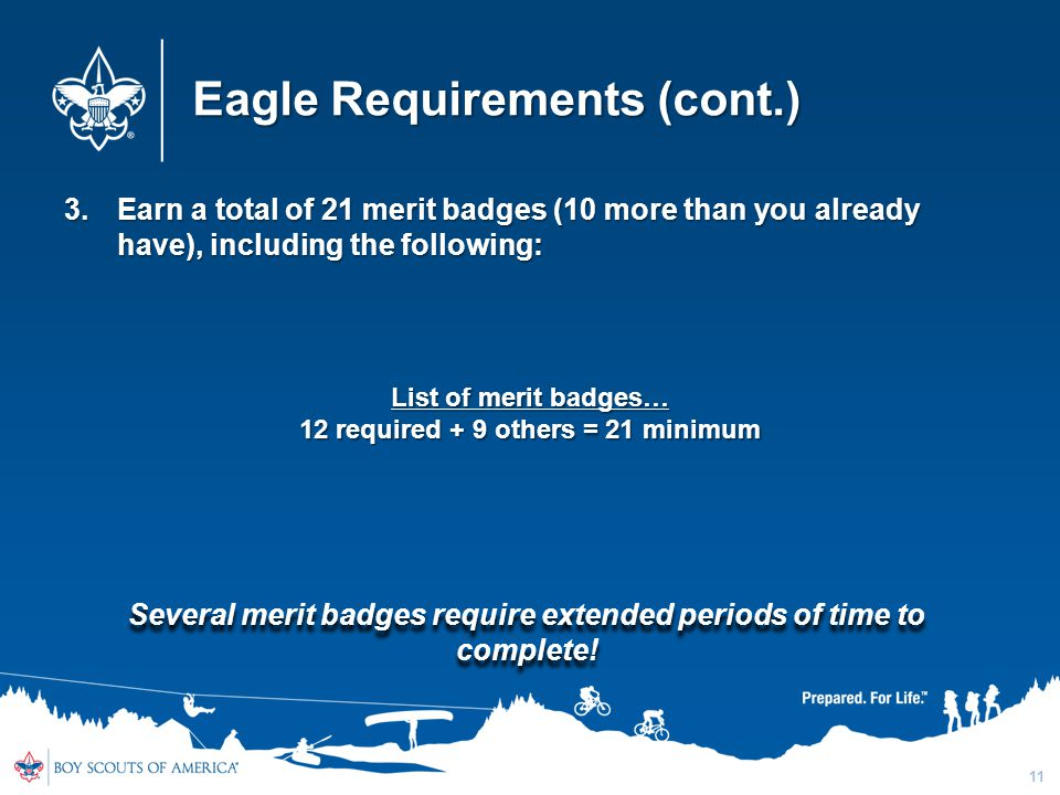 Eagle Requirements (cont.)