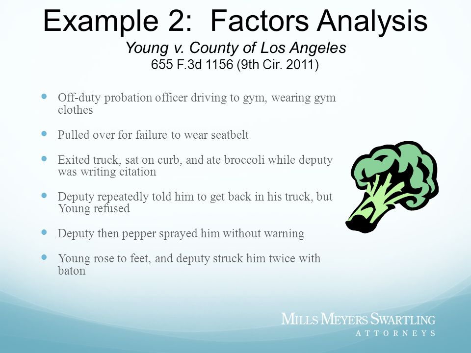 Example 2: Factors Analysis Young v. County of Los Angeles 655 F