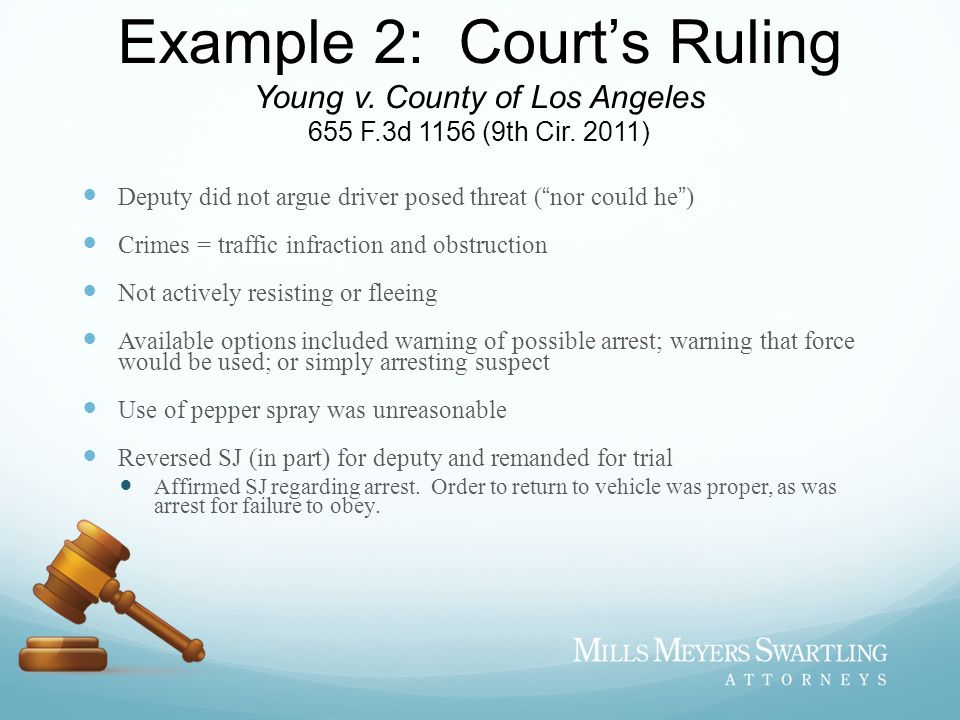 Example 2: Court's Ruling Young v. County of Los Angeles 655 F