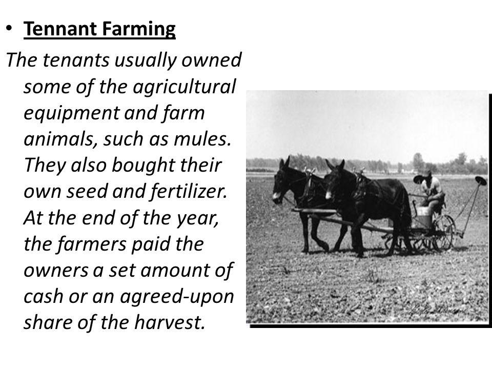 Tennant Farming