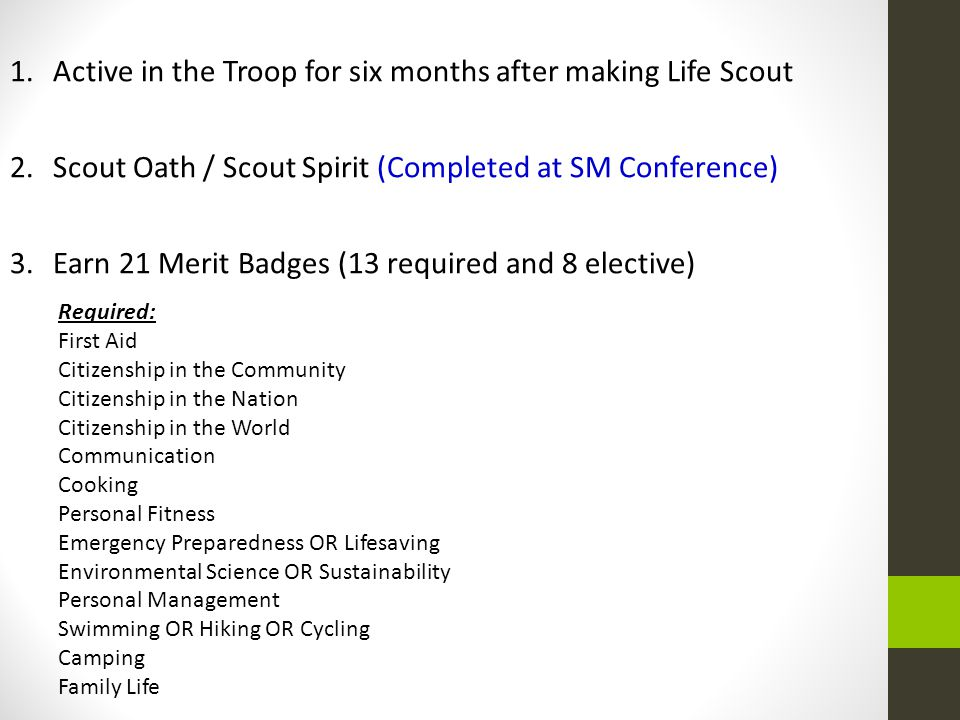 Active in the Troop for six months after making Life Scout