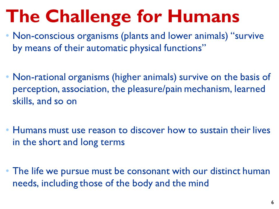 The Challenge for Humans