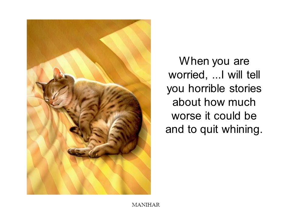 When you are worried, ...I will tell you horrible stories about how much worse it could be and to quit whining.