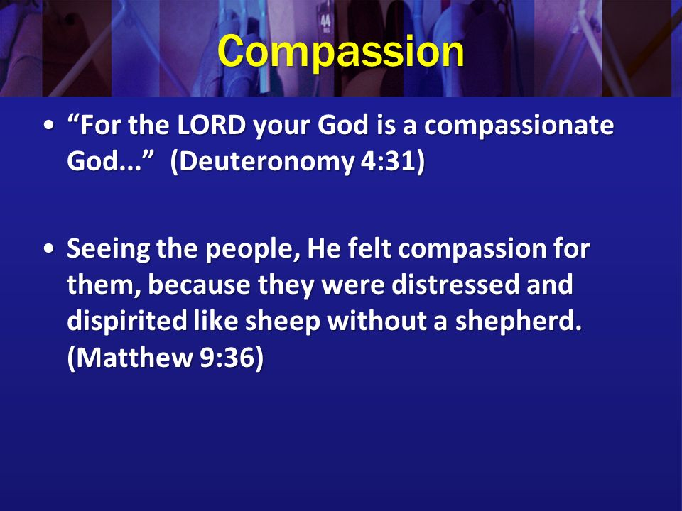 Compassion For the LORD your God is a compassionate God... (Deuteronomy 4:31)