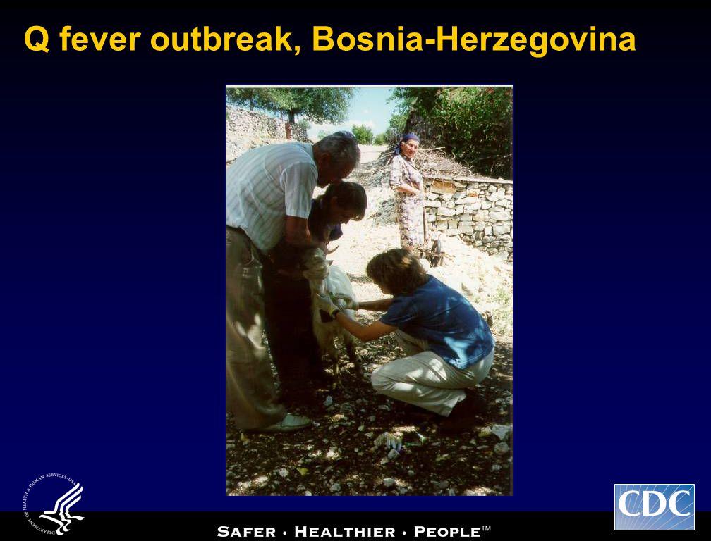 Q fever outbreak, Bosnia-Herzegovina