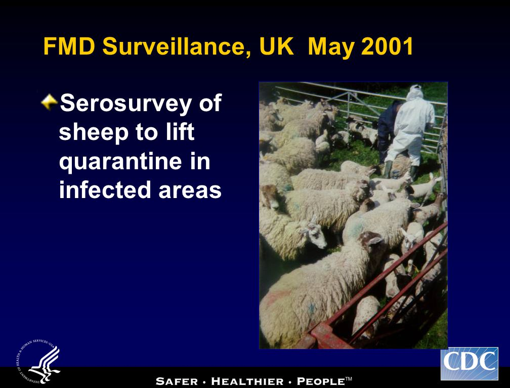 FMD Surveillance, UK May 2001