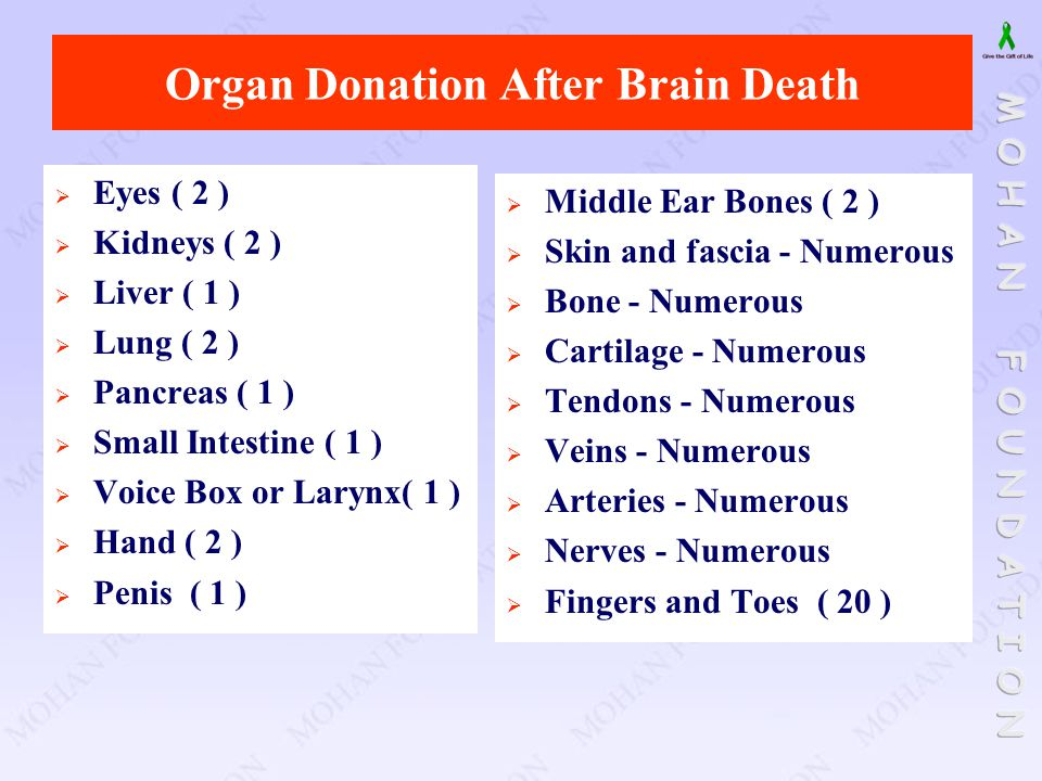 Organ Donation After Brain Death