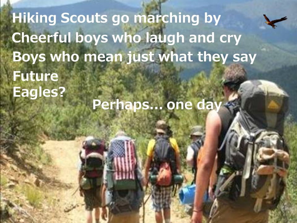 Hiking Scouts go marching by
