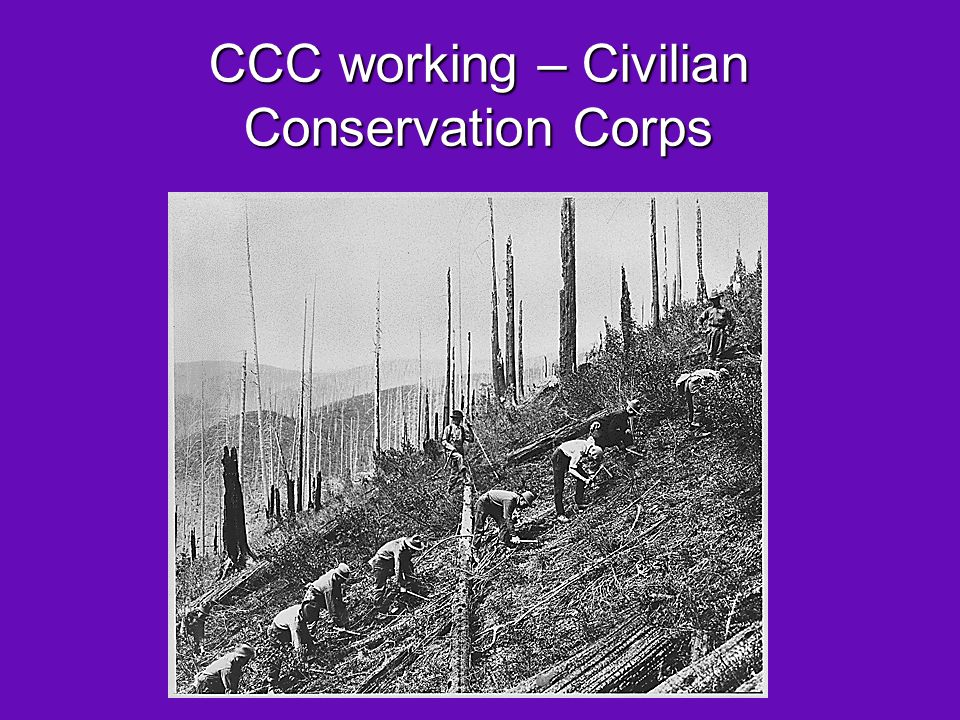 CCC working – Civilian Conservation Corps