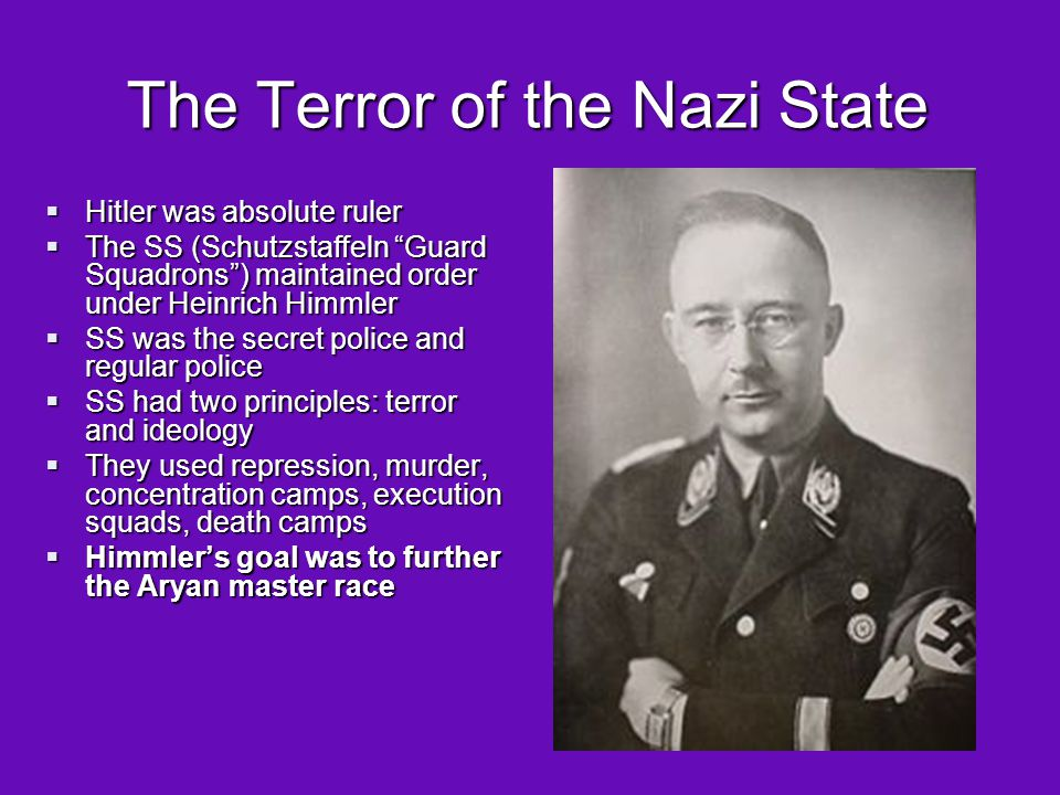 The Terror of the Nazi State