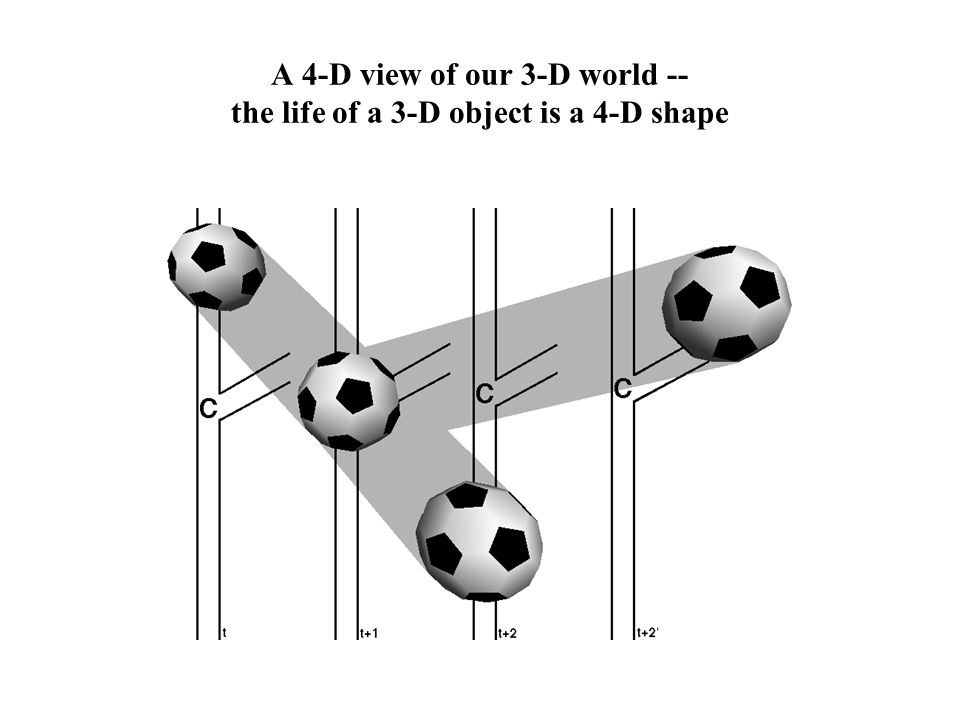 A 4-D view of our 3-D world -- the life of a 3-D object is a 4-D shape