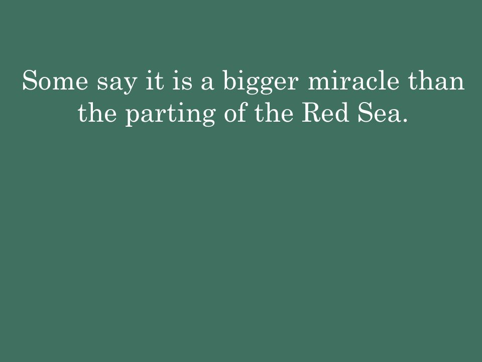 Some say it is a bigger miracle than the parting of the Red Sea.