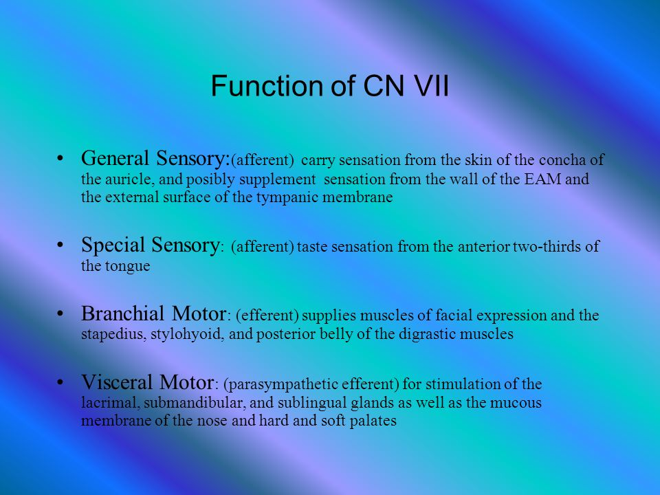 Function of CN VII