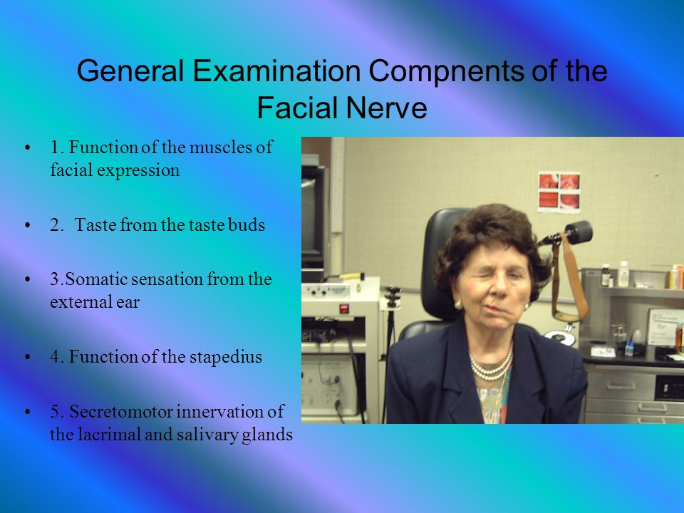 General Examination Compnents of the Facial Nerve