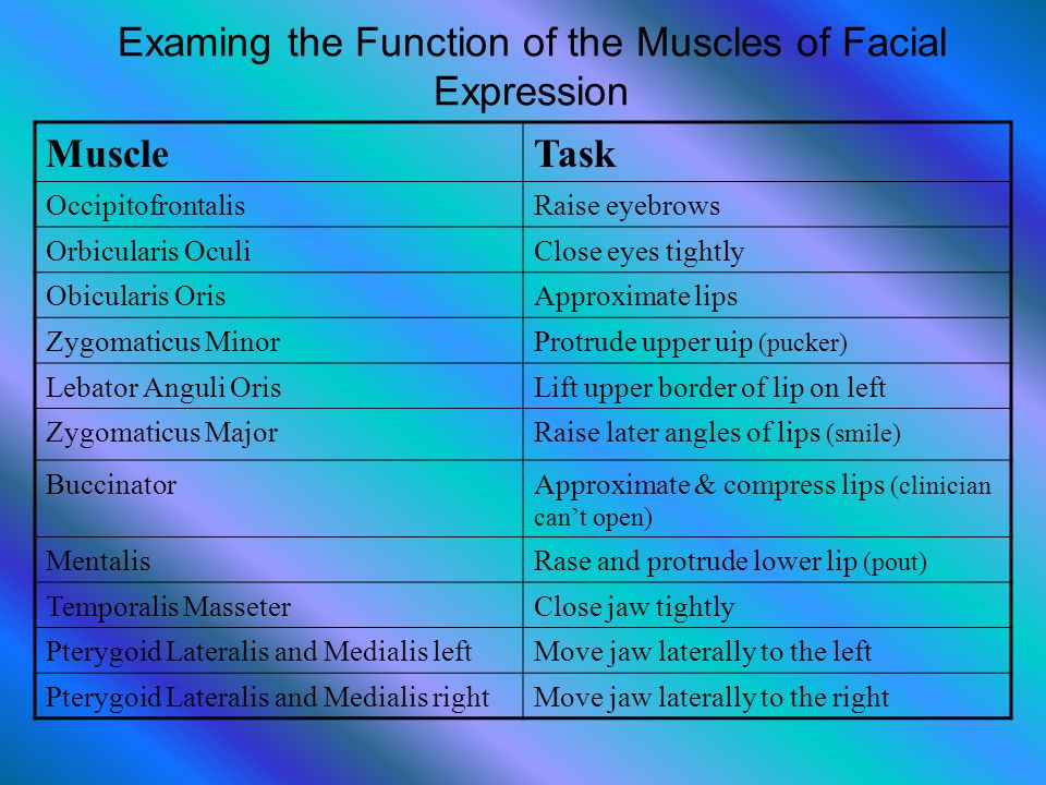 Examing the Function of the Muscles of Facial Expression