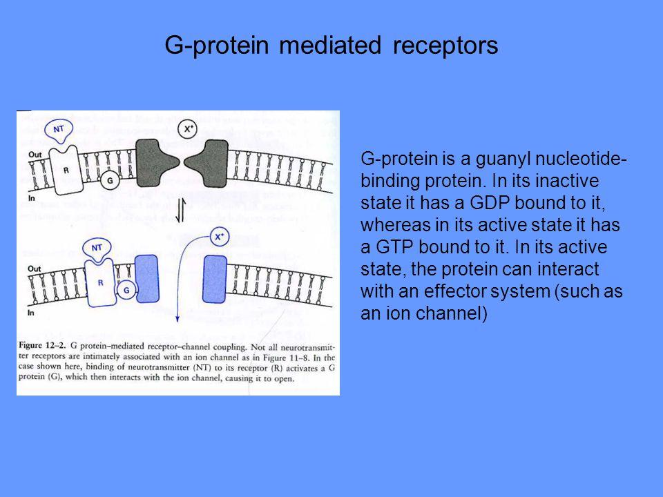 G-protein mediated receptors