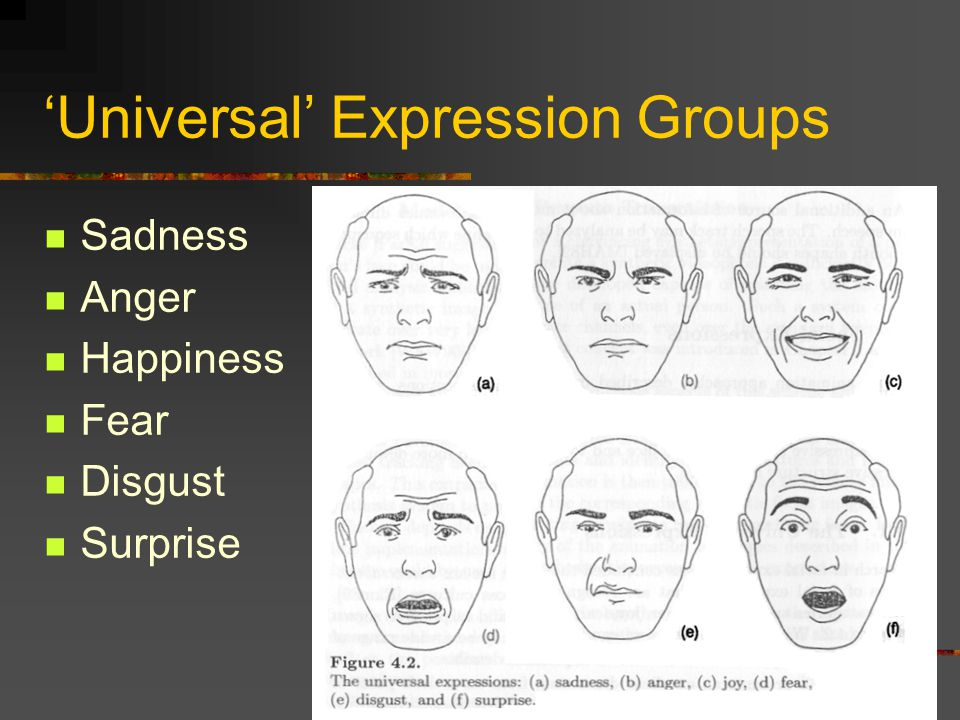 'Universal' Expression Groups