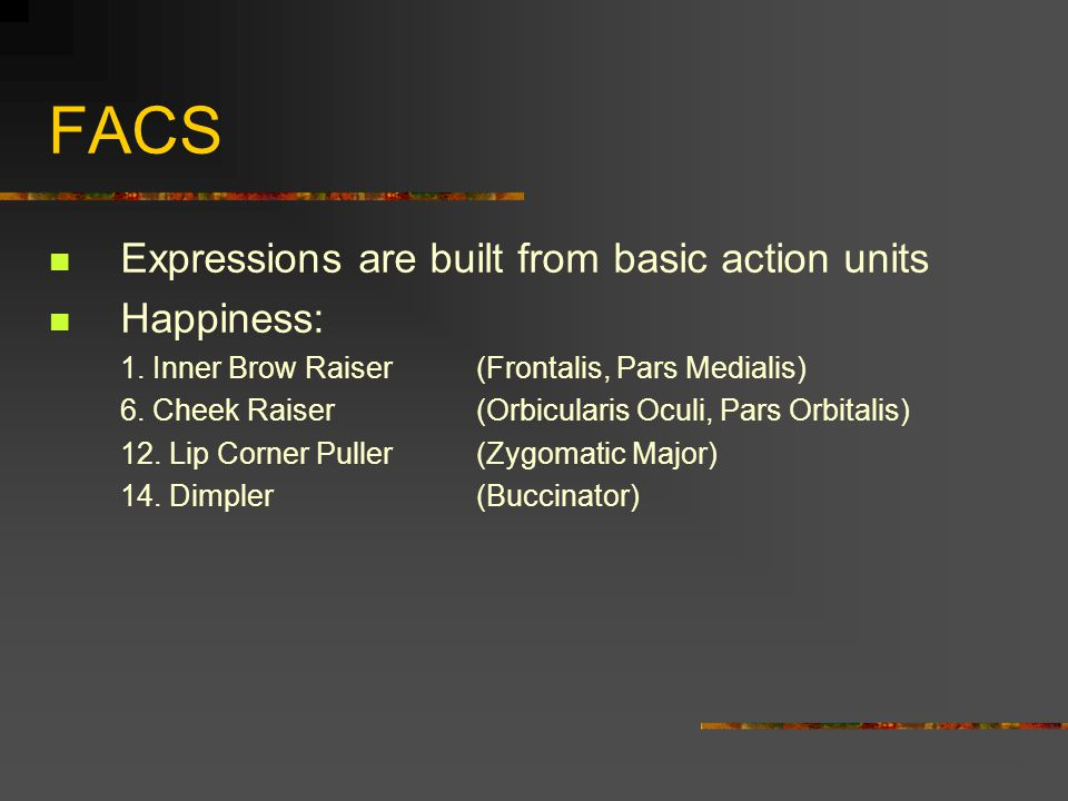 FACS Expressions are built from basic action units Happiness: