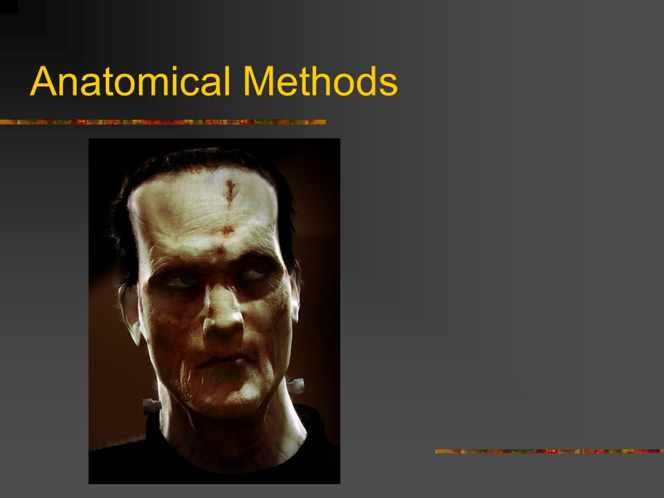 Anatomical Methods