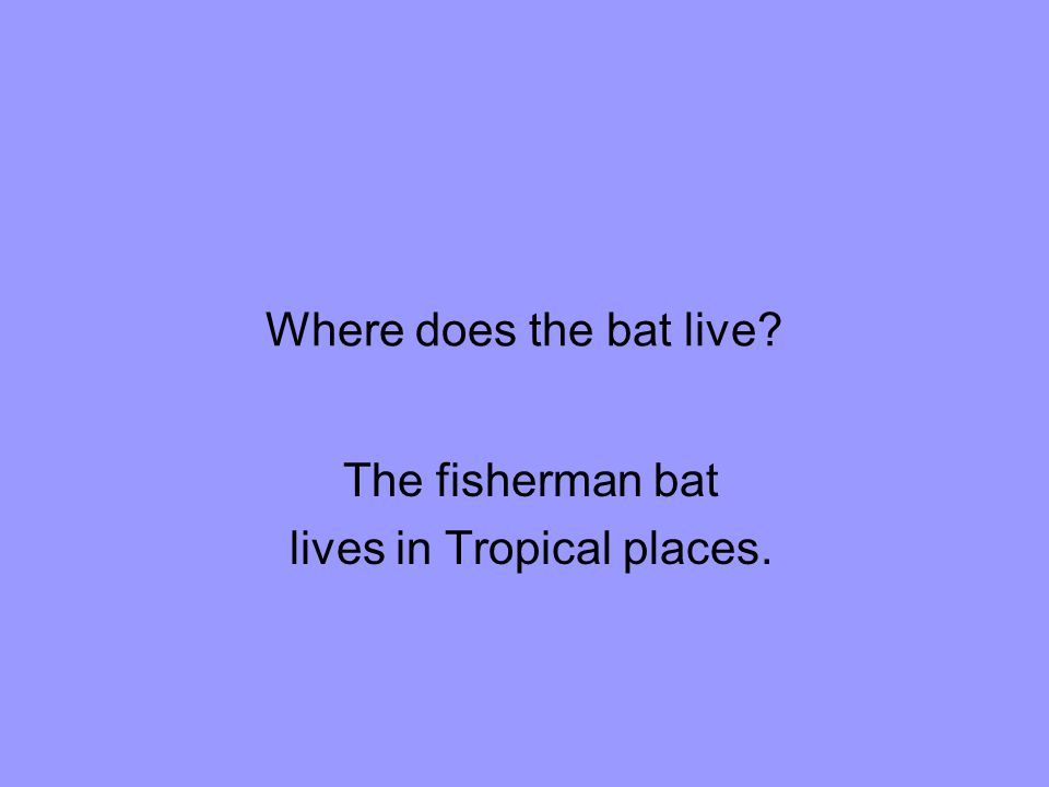 The fisherman bat lives in Tropical places.