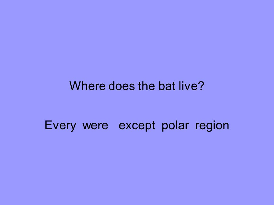 Every were except polar region