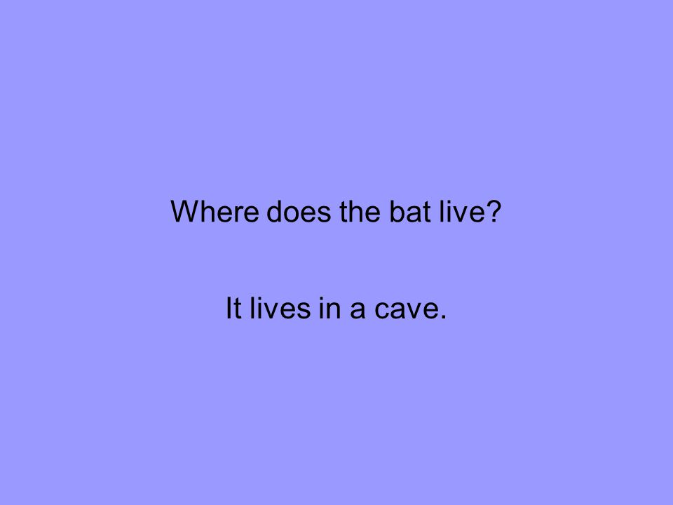 Where does the bat live It lives in a cave.