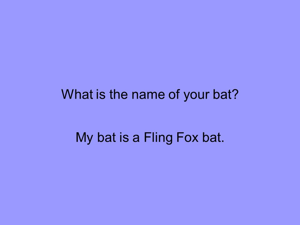 What is the name of your bat