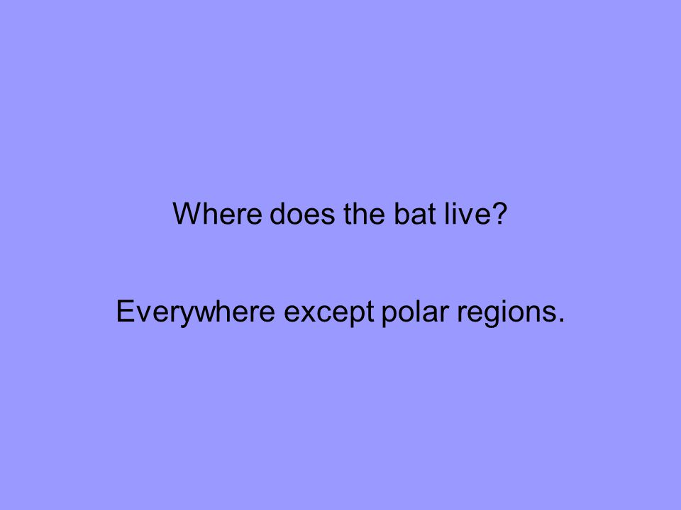 Everywhere except polar regions.
