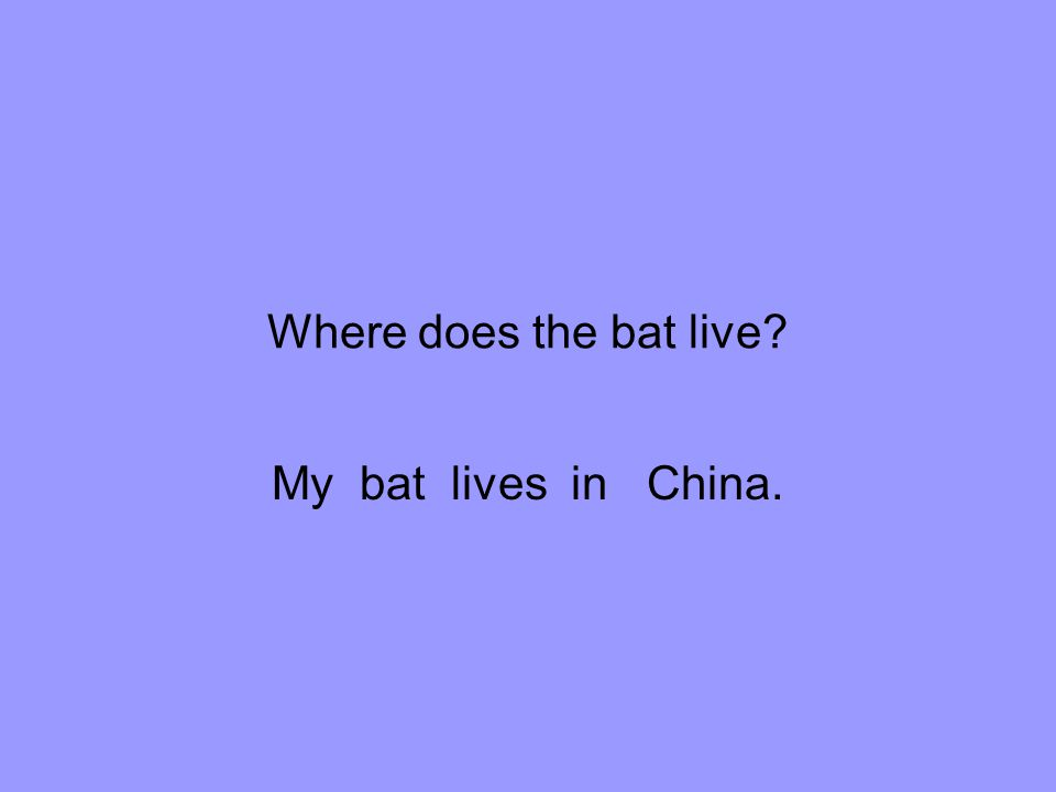 Where does the bat live My bat lives in China.