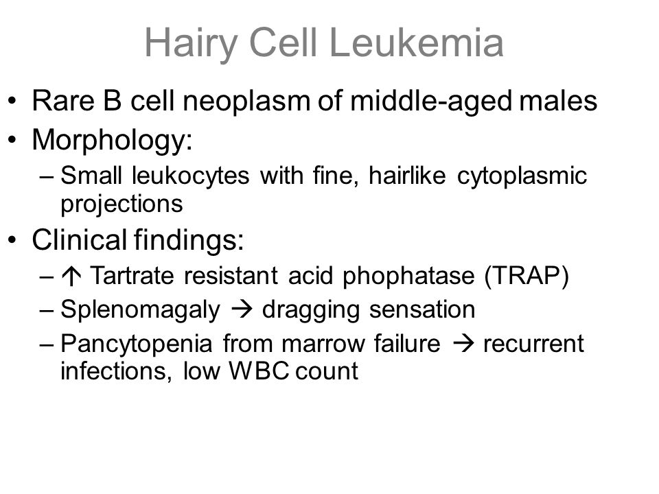 Hairy Cell Leukemia Rare B cell neoplasm of middle-aged males