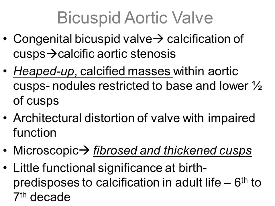 Bicuspid Aortic Valve Congenital bicuspid valve calcification of cuspscalcific aortic stenosis.